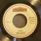 QUICK~Zulu~ Pavillion ZS5 02455 1981, 45