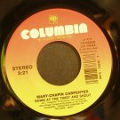 MARY-CHAPIN CARPENTER~Down at the Twist and Shout~Columbia 7383 VG+ 45
