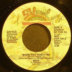 SKYY~When You Touch Me~Salsoul 7029 DJ (Soul) Promo 45