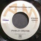 PABLO CRUISE~Whatcha Gonna Do?~A&M 1920-S (Soft Rock) VG+ 45
