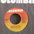 MARVIN GAYE~Sanctified Lady~Columbia 04861 (Smooth Soul)  45