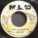 SHO-NUFF~What am I Gonna Do~Malaco 2072 (Disco) Rare VG+ 45