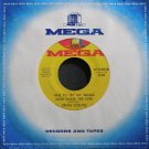 BRIAN COLLINS~Time to Try My Wings (And Chase the Sun)~Mega 0038 M- 45