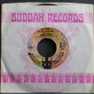 LEMON PIPERS~Jelly Jungle (Of Orange Marmalade)~Buddah 41 (Psychedelic Rock) VG++ 45
