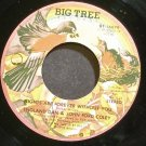 ENGLAND DAN & JOHN FORD COLEY~Nights Are Forever Without You~Big Tree 16079 (Soft Rock) VG++ 45