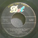 PAT BOONE~Love Letters in the Sand~Dot 15570 VG+ 45