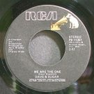 DAVE & SUGAR~We Are the One~RCA 11251 VG+ 45