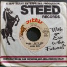 ANDY KIM~Baby, I Love You~Steed 716 VG+ 45