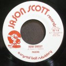 PACERS~How Sweet~Jason Scott 1 (Doo-Wop) M- 45