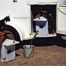 Horse Trailer Saddle Rack Water Tank Caddy DRY CAMP High Country Plastics ON SALE
