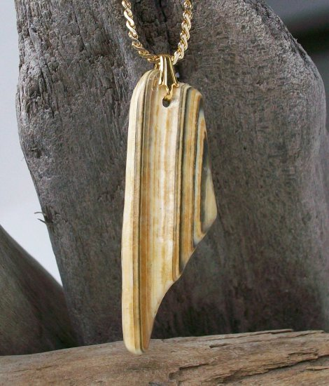 OBX102   Sea Shell Pendant from the Outer Banks