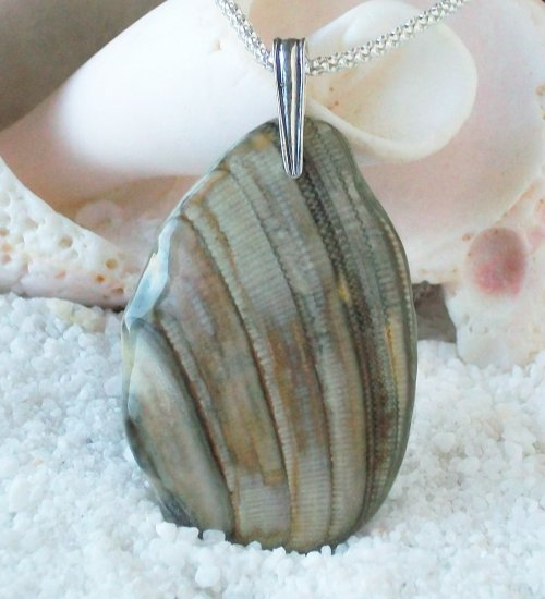 OBX103   Sea Shell Pendant from the Outer Banks