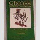 Ginger - Common Spice & Wonder Drug