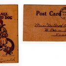 Vintage Letherlike Postcard from early 1900's
