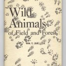 Wild Animals Of Field and Forest by Wm. T. (Bill) Cox