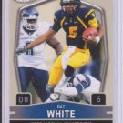 PAT WHITE SAGE HI SERIES RC DOLPHINS WEST VIRGINIA
