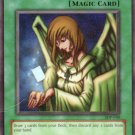 YuGiOh Trading Card Graceful Charity SDP 040 Unlimited Edition Rare