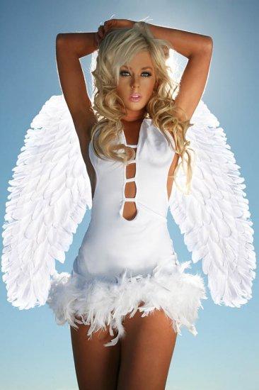 LC81250-1P Angel Wings