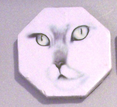 Ceramic TILE MAGNET Cat Face design 2.5 inch Refrigerator magnet 2010076
