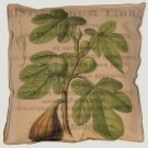 Figs Accent Box Pillow