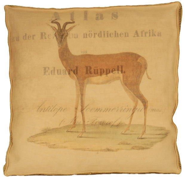 Antalope Atlas layered Box Pillow
