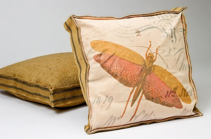 Insect Box Pillow B