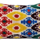 SILK VELVET IKAT PILLOW ~ 16 x 23 ~ NEW!