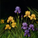The Iris Garden by Iris Kelmenson