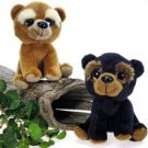"5.5"" 2 Assorted Baby Bear Cubs Case Pack 36...???!!!"
