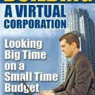 """Building a Virtual Corporation"""