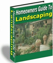 Guide to landscaping