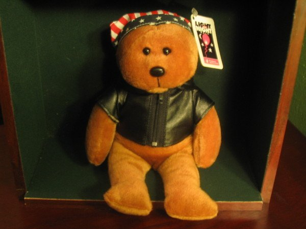 USA Ride Bear For Charity