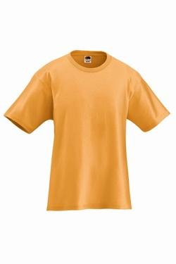 Adult Short Sleeve 100% Cotton T-Shirts 363A