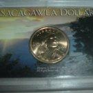 UNC. Sacagawea Dollar Series