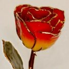Rose - 24Kt Gold - Yellow and Red