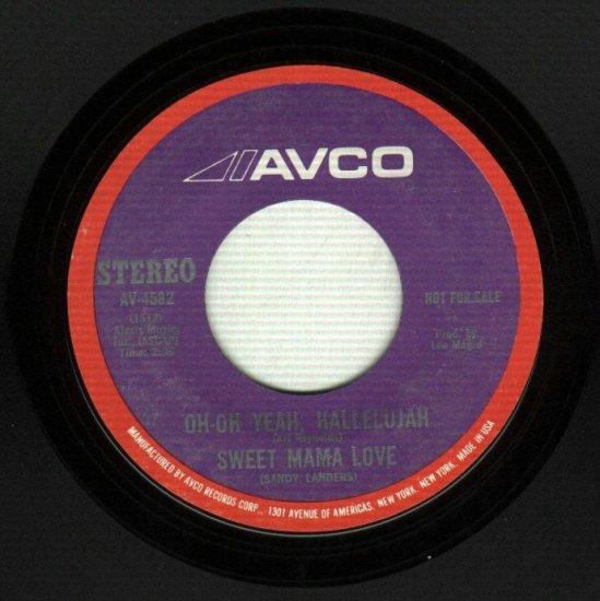 Sweet Mama Love - Dirty Dawg - AVCO 4582 PROMO R&B 45
