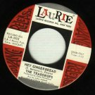 The Teardrops - Hey Gingerbread - LAURIE 3325 - PROMO 45 rpm Record