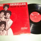 The Shirelles - Hear And Now - PRICEWISE 4002 - Rock  Record LP