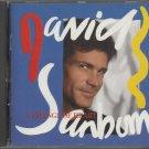 David Sanborn - A Change Of Heart -  CD