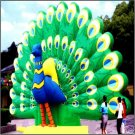 PEACOCK BIRDS ANIMALS WILDLIFE CARRIBEAN DIAMONDS SIGNS EXOTIC BIRDS RAINFOREST JUNGLE INFLATABES