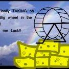 The big wheel in the sky
