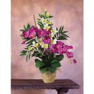 Double Phal/Dendrobium Silk Orchid Arrangement - Cream