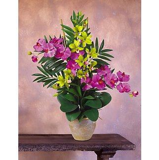 Double Phal/Dendrobium Silk Orchid Arrangement - Yellow