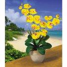 Double Stem Phalaenopsis Silk Flower Arrangement - Gold
