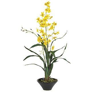 """Oncidium w/Black Ceramic Vase 33"""" - Yellow"""