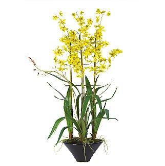"""Oncidium w/Black Ceramic Vase 35"""" - Yellow"""