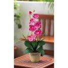 Single Stem Phalaenopsis Orchid Silk Flower - Dark Pink