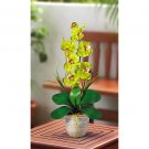 Single Stem Phalaenopsis Orchid Silk Flower Arrangement - Green