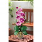 Single Stem Phalaenopsis Orchid Silk Flower Arrangement - Mauve