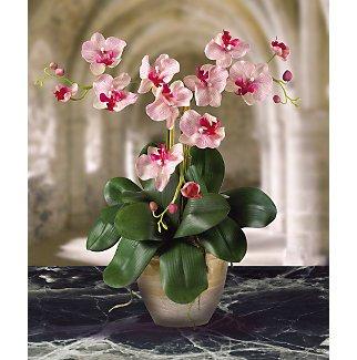 Triple Mini Phalaenopsis Silk Flower Arrangement - Pink White